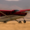 Quest Kodiak 100