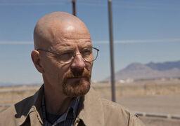 Episode-7-Walt.jpg