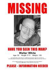Walt Missing Poster.jpg