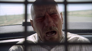 3x2 Walt peppersprayed.png