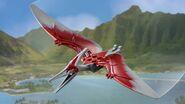 Pteranodon CH detail image 744w