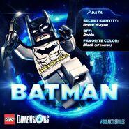 Batmandim