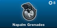 BRINK Napalm Grenades icon.png