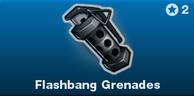 BRINK Flashbang Grenades icon.png