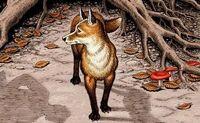 Marney the Fox