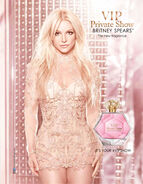 Private Show VIP Poster