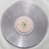 BOMT Clear Vinyl