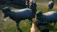 Sheep Squad Easter Egg