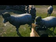 Easter Eggs - Sheep Squad in Brothers in Arms- Hells Highway