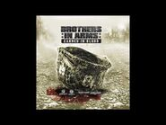 Brothers in Arms Earned in Blood Soundtrack - Funzionare