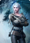 Tw3 cardart neutral ciri