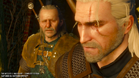 Witcher 3 Switch screen 9