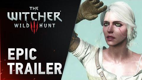 Epic Year for The Witcher