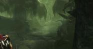 Swamp Route