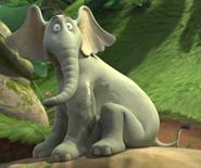 Horton says bye to sour kangaroo 4