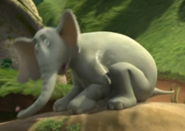 Horton stands up of the ground 10