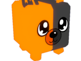 Foxy Split