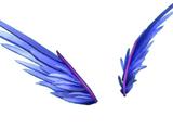 Interstellar Wings