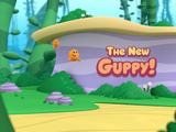 The New Guppy!