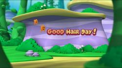 Hair3.png