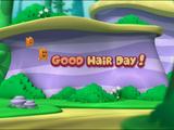 Good Hair Day!