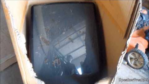 TV Picture Tube Smash