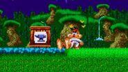 Yamaneko Bubsy no Daibouken (SNES) - Gameplay