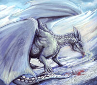 Holy Dragon, Schneesturm.jpg
