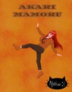 Akari Mamoru Season 1 Official Redesign