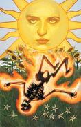 TAROT-Sun