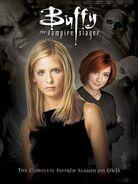 B4 DVD