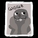Wiggle Autograph sticker