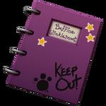 Beffica Diary