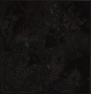 Obsidian panel