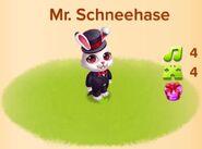 Mr. Schneehase