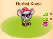 Herbst Koala