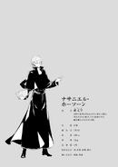 Nathaniel Hawthorne Profile