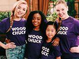 Wood Chucks