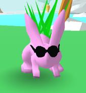 Sunglasses Bunny Skate