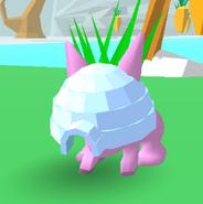 Igloo Bunny Skate