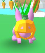 Jack-o-lantern Bunny Skate