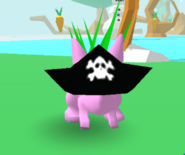 Pirate Hat Bunny Skate