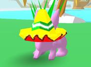 Sombrero Bunny Skate