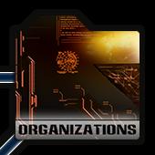 Wiki-grid Organizations