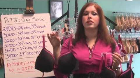 Bra Naked Truth - How Band Cup Sizes Work-0
