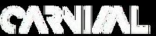 Cokodive-pre-order-bvndit-2nd-mini-album-carnival-15058099601488 800x-removebg-preview.png
