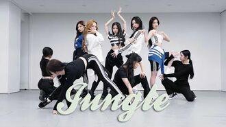 "BVNDIT(밴디트) - ""JUNGLE"" Dance Practice"