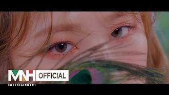 "BVNDIT(밴디트) - ""JUNGLE"" Music Video Teaser 1"