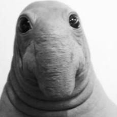 Ronnie Morris's avatar