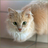 Песочная Жемчужина's avatar
